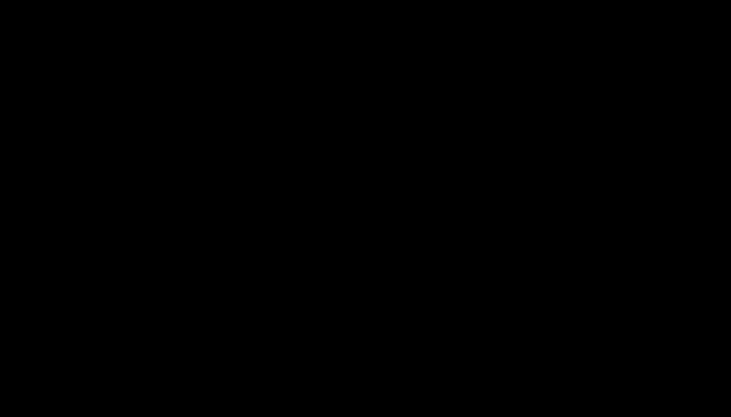 Эмблема Астон Мартин (черная)
