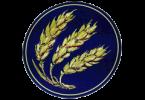 Логотип Hommell