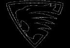 Логотип Spirra