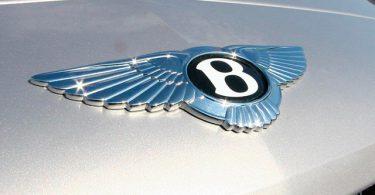 Логотипы автомобилей с крыльями